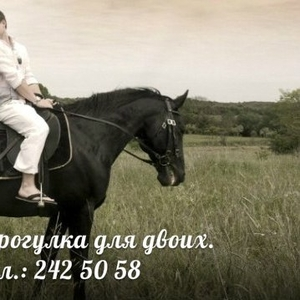Романтическая прогулка на лошадях.