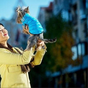 Ультравет – интернет магазин для животных,  более 6000 товаров.