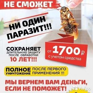 Уничтожение тараканов, насекомых и грызунов