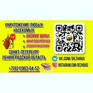 Уничтожение клопов и тараканов СПБ И Ленинградской области
