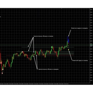 Индикатор,  профиль объемов,  контракты и гистограмма для рынка Фортс МТ5