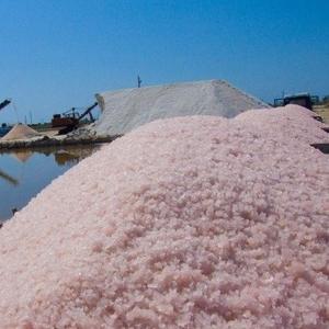 Сакская розовая соль по оптовым ценам