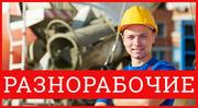 Услуги разнорабочих,  грузчиков и любых рабочих
